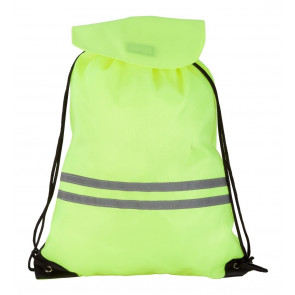 Carrylight Visibility Bag